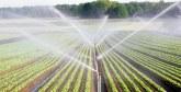 Le Maroc en fait partie : Six pays africains ont réussi à améliorer leurs récoltes en augmentant les niveaux d'irrigation