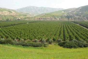 Pour faire face à la surexploitation des ressources forestières : La direction régionale des eaux et forêts du Moyen Atlas adopte  une approche sécuritaire