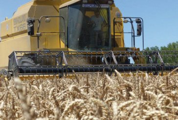 Rabat-Salé: La campagne agricole 2017-2018 se déroule dans de bonnes conditions