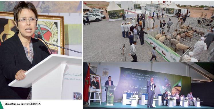 12ème étape du «Village itinérant» : L'Office national du conseil agricole s'invite à Jerada