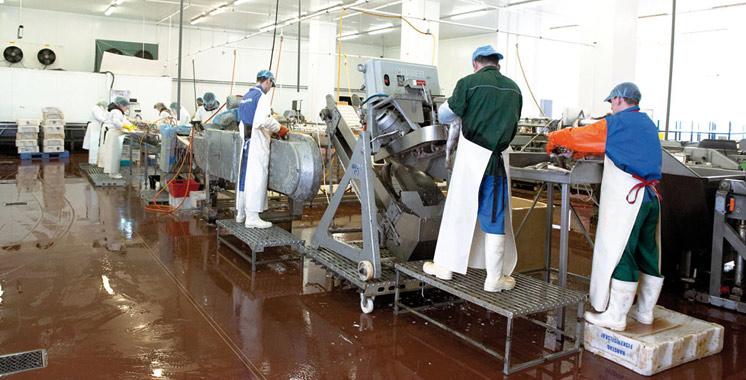 Produits de la mer : Le Maroc lorgne les marchés du Golfe