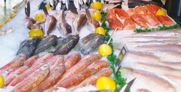 ça se passe à El Jadida: Le Forum de la mer entame sa 5ème édition