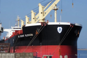 Une cargaison encombrante à Port Elisabeth: L'Afrique du Sud prise dans son propre piège