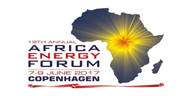 Une importante délégation marocaine à l'Africa Energy Forum à Copenhague