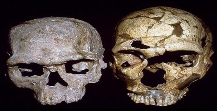 Youssoufia: Découverte des plus anciens Homo sapiens à Jbel Irhoud