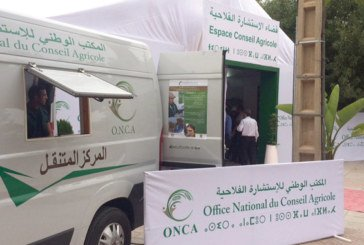 Festival des cerises de Sefrou : L'ONCA répond présent
