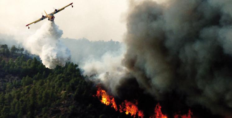 Vague de chaleur exceptionnelle: 1.200 ha de forêts incendiés en trois jours