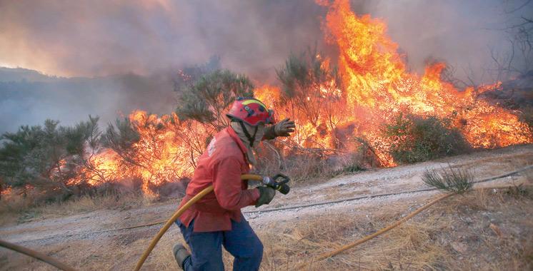 Prévention et lutte contre les incendies :  Les détails de la nouvelle stratégie nationale
