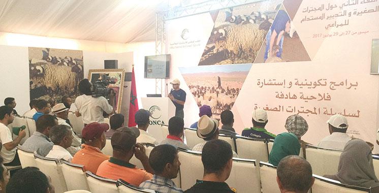 Rencontre sur l'élevage: L'apport de l'ONCA pour  la formation