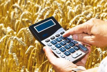 Perspectives économiques selon le HCP: La valeur ajoutée agricole croîtrait de 14,9% au 3ème trimestre