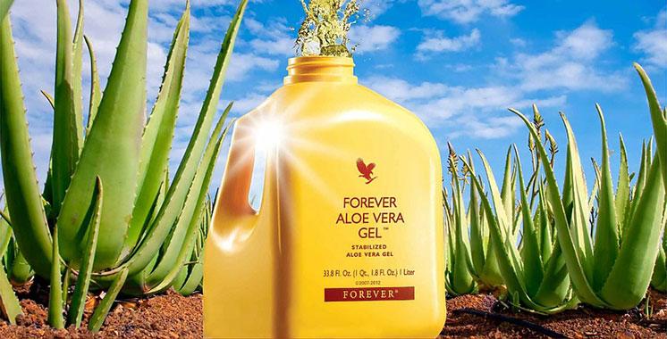 Forever Living Product fait de la pulpe d'Aloès Stabilisée son produit phare