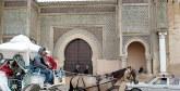 Le Conseil préfectoral du tourisme de Meknès veut fédérer les professionnels