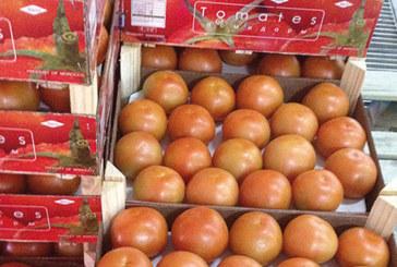 Le Maroc premier fournisseur de l'Espagne en fruits et légumes