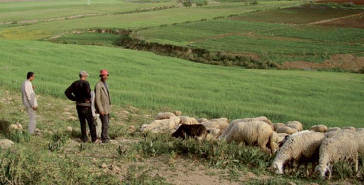 Maroc-UE : L'amélioration de la mise en oeuvre de la SNCA au centre d'un atelier à Rabat