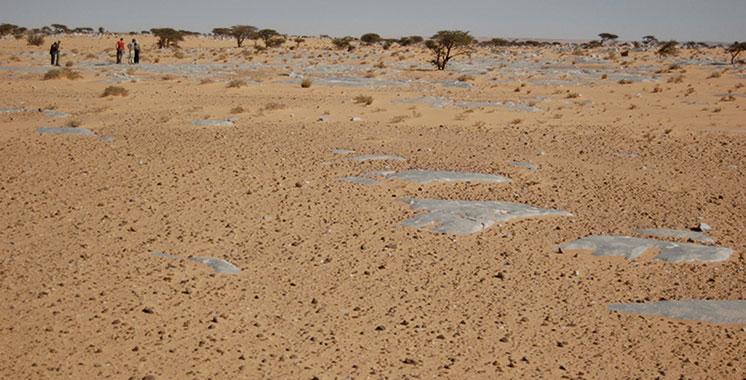 Laâyoune : Une étude pour protéger le littoral contre l'érosion