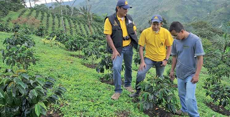 La nouvelle campagne de Nespresso mise sur la durabilité