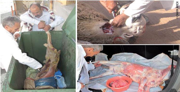 Scandale de la viande verte : L'ONSSA s'explique