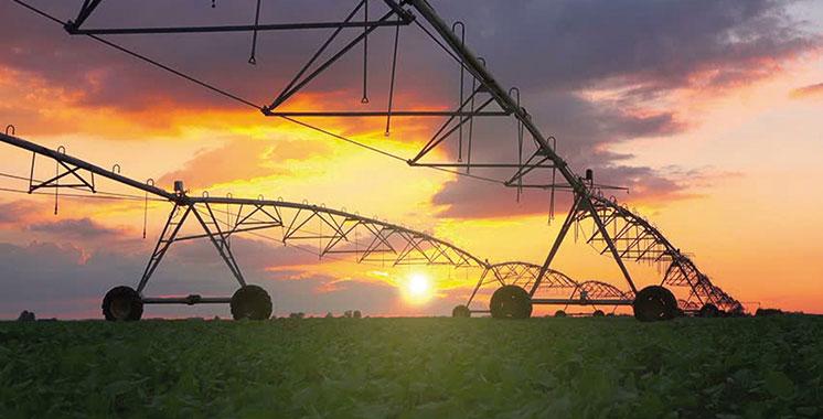 Province de Boujdour : 465 MDH pour la réalisation d'un projet d'aménagement hydro-agricole