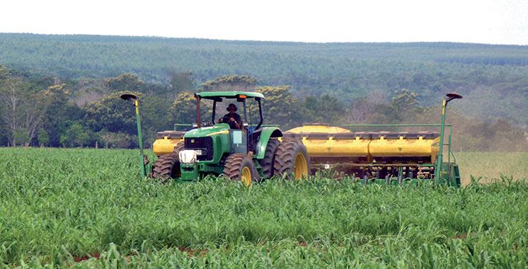 La politique énergétique du Maroc pour soutenir le secteur agricole mise en avant par OBG