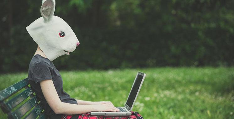 Bad Rabbit, un nouveau ransomware qui sème  le désordre