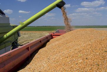 Campagne 2016-2017 : Bonne récolte céréalière