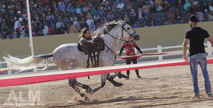 Le Salon du cheval d'El Jadida de retour du 16  au 21 octobre