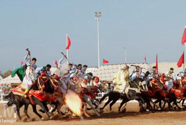 Salon du cheval  d'El Jadida : Plus de 230.000 visiteurs