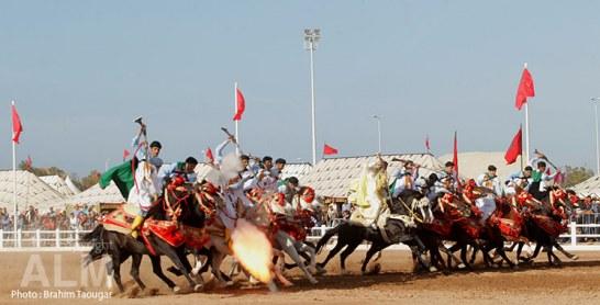 Salon du cheval d'El Jadida : Une édition forte en adrénaline