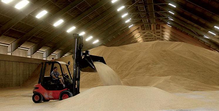 Le Maroc devra encore importer des céréales
