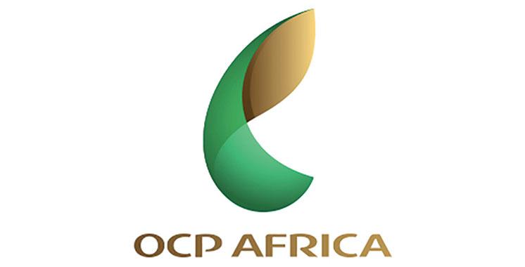 «OCP Africa» aspire à une agriculture moderne et créatrice de valeur en Afrique