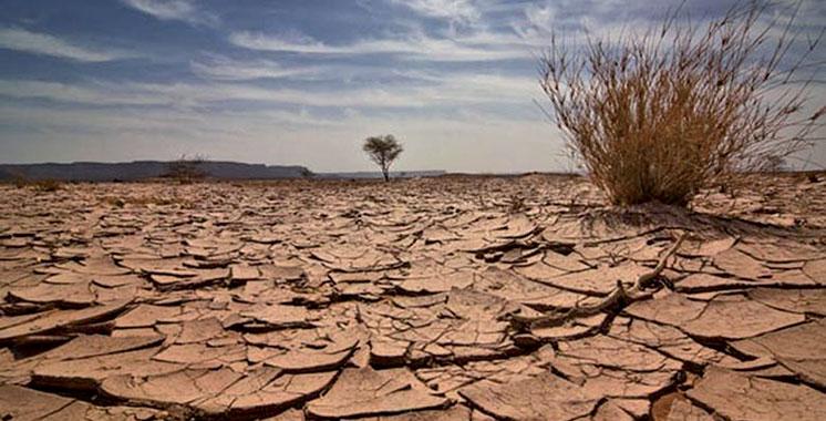 Réchauffement climatique : Quels seront les impacts au Maroc ?