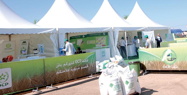 OCP oriente les agriculteurs vers  une utilisation raisonnée des engrais