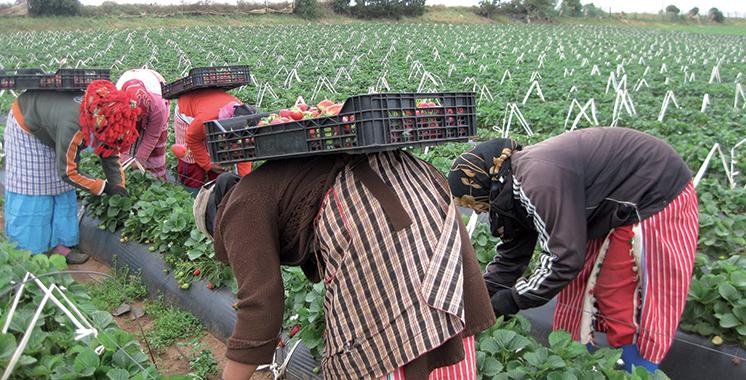 Séminaire à Rabat : La femme contribue dans 93% des activités agricoles et para-agricoles