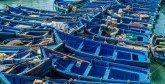 Dakhla : Démantèlement de deux chantiers clandestins de fabrication de barques artisanales