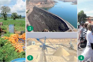 Situation de l'économie nationale en 2017 et perspectives de 2018: L'agriculture reste le premier contributeur à la croissance