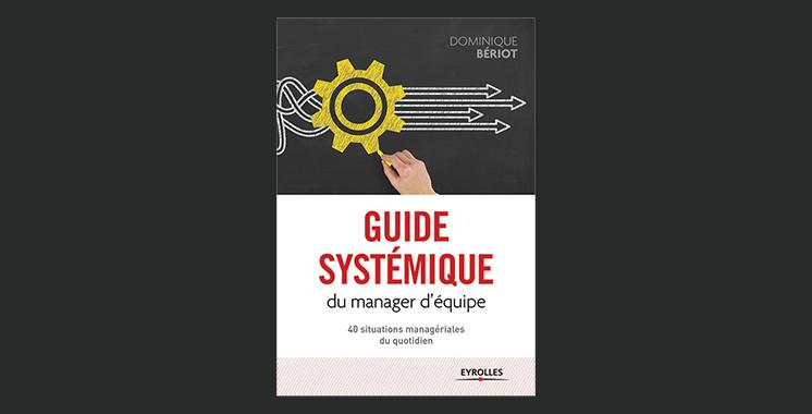 Guide systémique du manager d'équipe, 40 situations managériales du quotidien, de Dominique Bériot