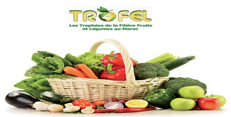 Trofel 14 pays prennent part la 9 me dition le blog d 39 agadir par michel terrier - Fruits et legumes de a a z ...