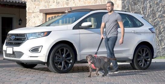 Conseils de Ford : Voyagez en toute sécurité avec votre animal de compagnie