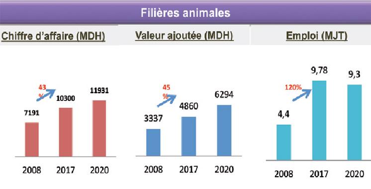 Filière animale : Un chiffre d'affaires de 10,3 milliards DH à Casablanca-Settat