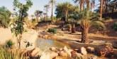La 5è édition du Forum international des oasis et du développement local du 24 au 27 février à Zagora