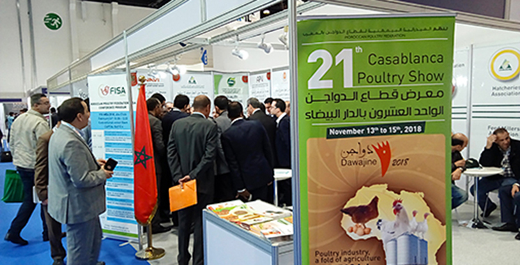 Le Maroc invité d'honneur du Salon d'Abou Dhabi d'élevage de volailles