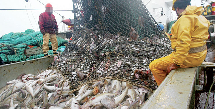 Accord de pêche : La commission parlementaire mixte Maroc-UE  se félicite de l'achèvement des négociations