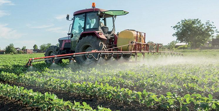 Fondation Crédit Agricole du Maroc : Appui permanent à l'agriculture durable
