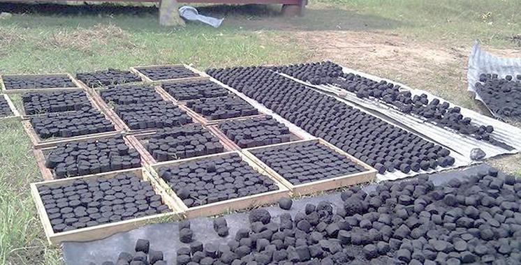 Agadir : Un atelier international  sur le charbon vert