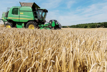 6,85 milliards DH d'investissements agricoles à Casablanca-Settat