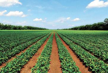 Zones sinistrées : La procédure d'indemnisation  des agriculteurs lancée