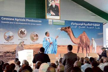 Caravane agricole Phosboucraa : Une contribution à la promotion de la filière cameline
