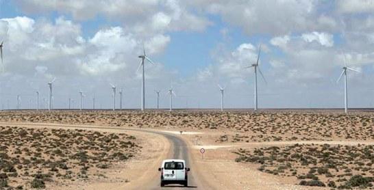 Une première dans les provinces du Sud  : Une usine de dessalement et un parc éolien pour les agriculteurs du Sahara marocain
