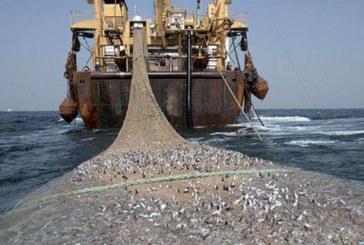Une mission danoise en mars au Maroc pour explorer la coopération dans le domaine de la pêche