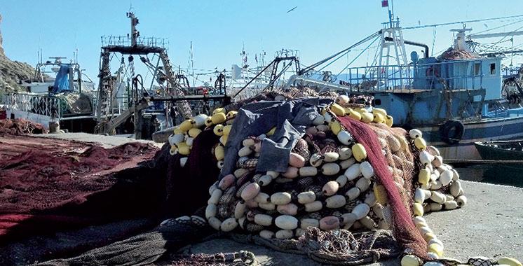 Pêche côtière et artisanale : Des débarquements de l'ordre de 2 milliards de dirhams à fin mars